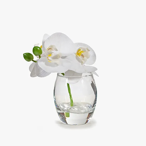Hamptons 15cm Orchid in Glass Vase